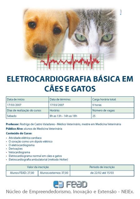 Cliente: Hospital Veterinário - FEAD
